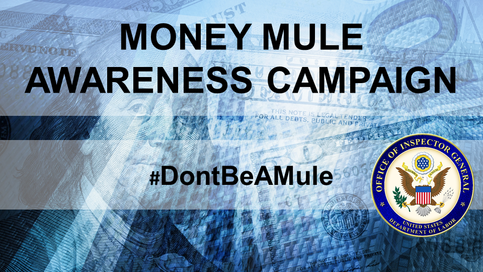 Money Mule Awareness Campaign One-Pager