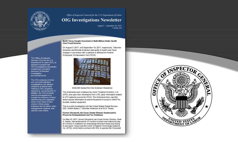 Cover of Oig Investigation Newsletter Volume 12