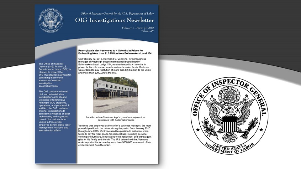Cover of Oig Investigation Newsletter Volume 15