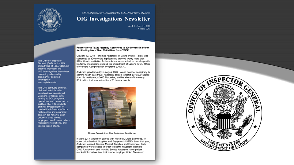 Cover of Oig Investigation Newsletter Volume 16