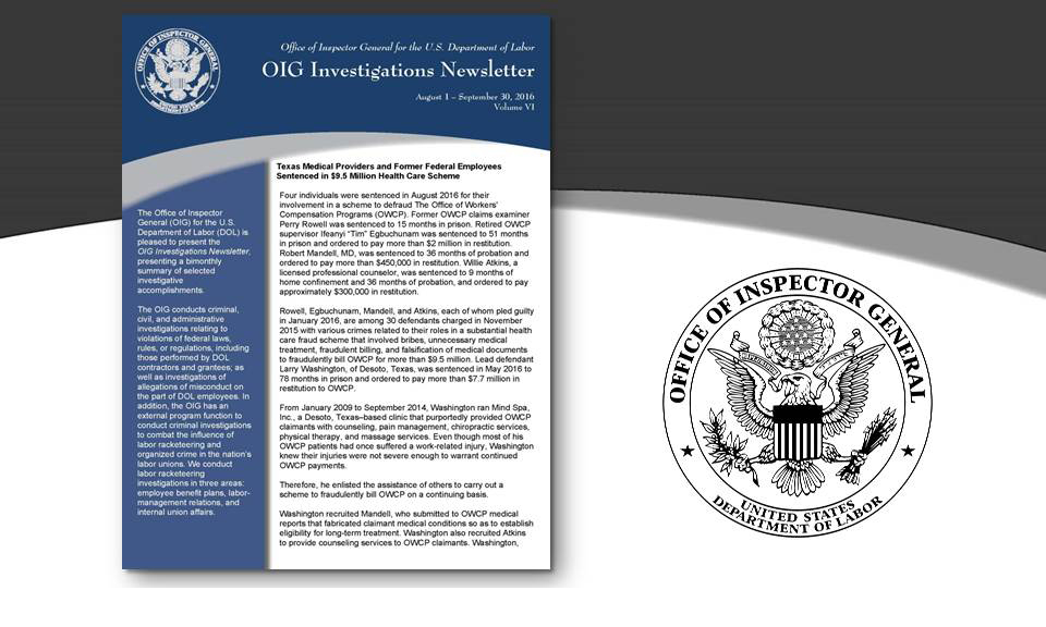 Cover of Oig Investigation Newsletter Volume 6