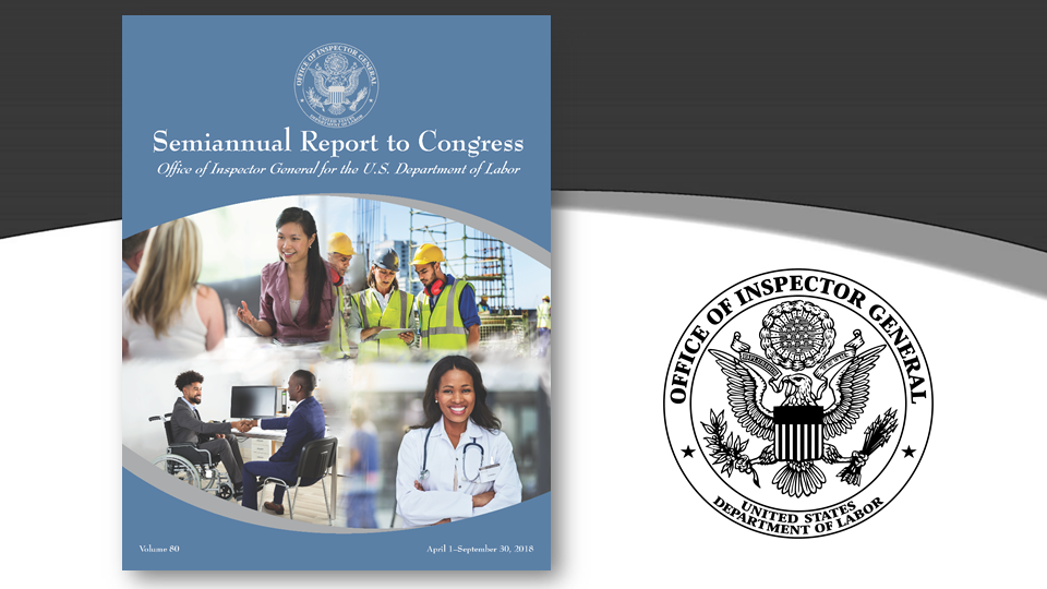 Cover of Semiannual Report Volume 80